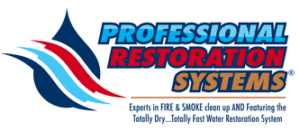 Professional Restoration Systems 07312018 300x131 - Professional Restoration Services Gives You Preferential Treatment